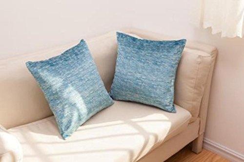 Best Token 2pcs Chenille Decorative Pillow Cover Pillow Case