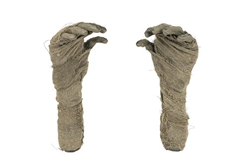[Mummy Hand Ground Breaker, Halloween Party Accessory Prop/Room Decoration] (Mummys Day Costumes)