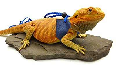 Ogle Lizard Leash, Limited Edition Blue Web by OgleRPets