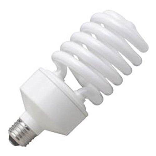 - 42 Watt Spring CFL Light Bulb ~ 150 to 200 Watts