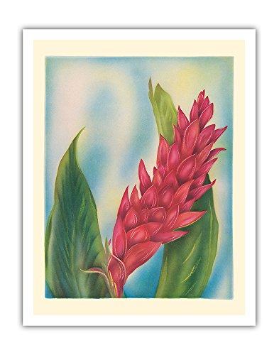 Hawaiian Painting - Hawaii Red Ginger - Vintage Hawaiian Airbrush Art by Tip Freeman c.1940s - Fine Art Print - 11in x 14in