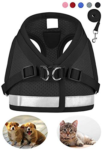 GAUTERF Dog and Cat Universal Harness with Leash Set, Escape Proof Cat Harnesses - Adjustable Reflective Soft Mesh Corduroy Dog Harnesses - Best Pet Supplies (XX-Small, Black)