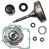 Mophorn Wet Clutch Shoe Kit With Drum One Way Filter Wet Clutch Kit for Bennche Bighorn