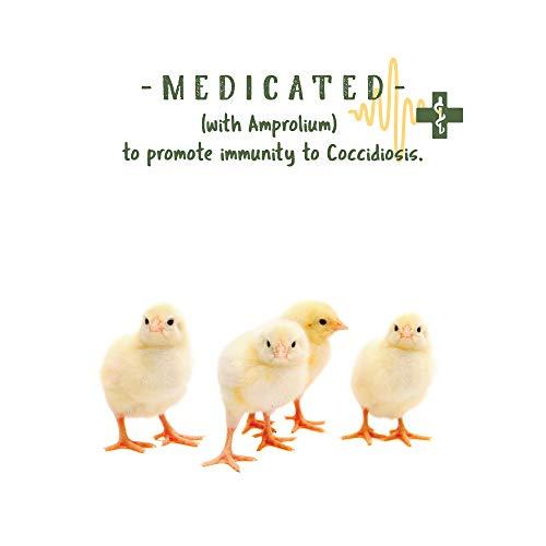 Manna Pro Medicated Chick Starter, 25 lb