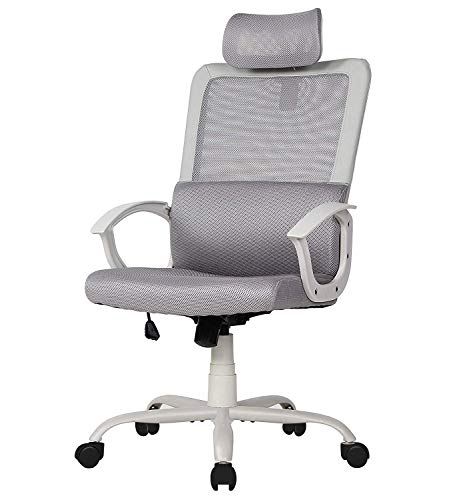Smugdesk Ergonomic Office Chair High Back Mesh Office Chair Computer Task Chair with Adjustable Headrest , Gray (Best Ergonomic Task Chair)