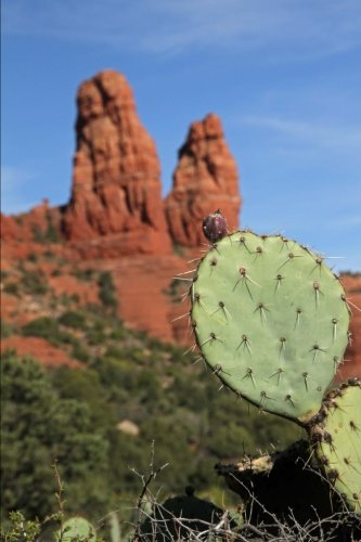 Download Red Rock Formations near Sedona Arizona Journal: 150 Page Lined Notebook/Diary ebook