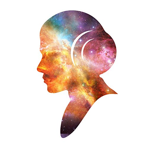 """Decal Serpent Princess Outline Space Galaxy Leia Silhouette Carrie RIP Sticker 5"""""""