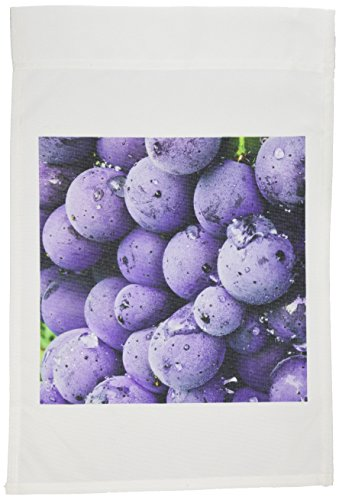 3dRose fl_82170_1 Italy, Tuscany, Greve. Chianti Grapes Vineyard-EU16 RDU0136-Richard Duval Garden Flag, 12 by 18-Inch