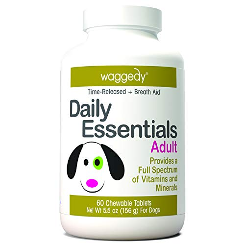 (The Institute of Pet Nutrition Daily Essentials Senior Dog Vitamins Supplement (Chewable) Advanced Natural Multivitamin | Joint, Coat, Skin Health | Healthy Energy Levels | Small, Medium, Large Breeds)