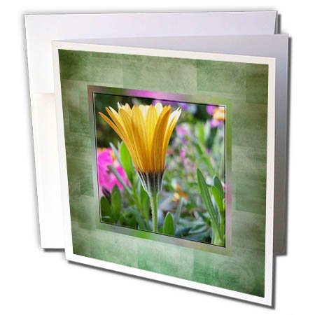Gerber Daisy Personalized - 3dRose Beverly Turner Flora Design and Photography - Yellow Gerber Daisy in Flower Garden in Green Abstract Frame - 6 Greeting Cards with Envelopes (gc_282193_1)