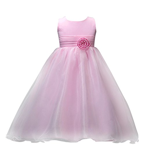 The Shining Twins Costumes (Flower Lace Princess Dress Hosamtel Girl Party Wedding Bridesmaid Tulle Ball Gown Dress (Pink, 100))