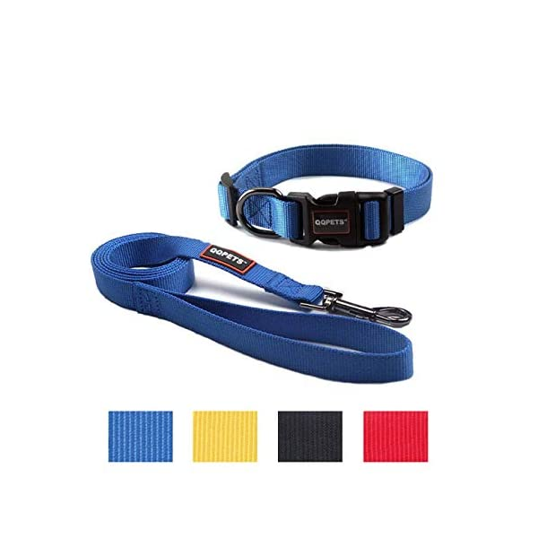 QQPETS Dog Leash and Collar Set for Medium or Large Dogs Training Walking, Adjustable Collar with Breakaway Buckle and… Click on image for further info.
