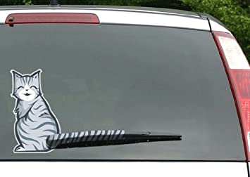 Amazoncom MosBug Moving Tail Kitty Car Decal Rear Window And - Window decals amazon