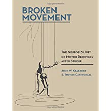 Broken Movement: The Neurobiology of Motor Recovery after Stroke