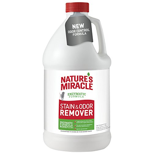 Stain Feces Removal (Nature's Miracle Stain and Odor Remover 64 oz)