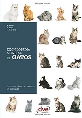 ENCICLOPEDIA MUNDIAL DE GATOS: Amazon.es: Brunetti, B.: Libros