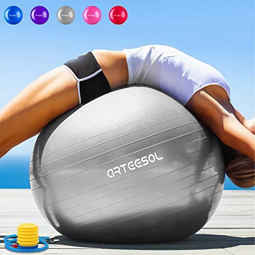 Arteesol Exercise Ball Anti-burst Anti-slip 65/75 cm Yoga Swiss Ball (Silver, 75cm)