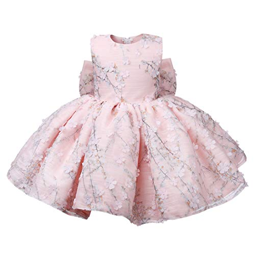 ZTXHRS Baby Girl Dress Floral Pink Tulle Kids Party 1st Birthday Gown Infant Wedding Gowns (12M)