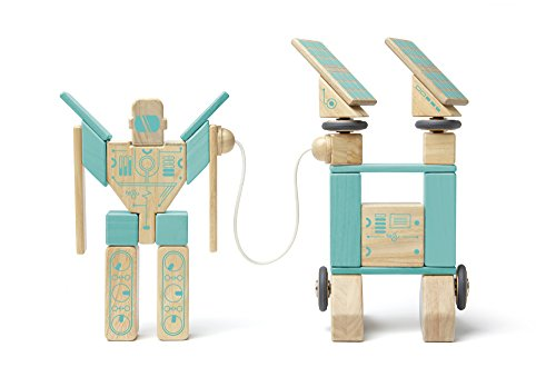 Tegu Magnetron Magnetic Wooden Block Set by Tegu