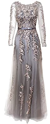 Meier Women's Illusion Long Sleeve Embroidery Tulle Gown