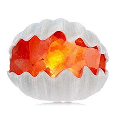 Goeco Sea Shell Himalayan Natural Salt Lamp Hand Carved with Dimmer Control and 2 2.5W Warm Bulbs ,US Plug