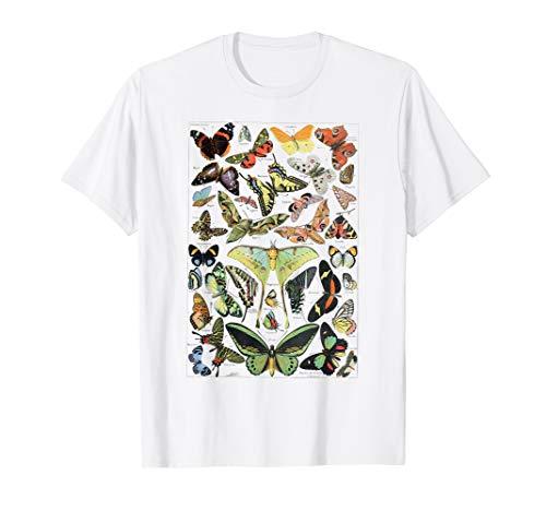 Papillons Butterfly Chart Butterflies Butterfly Collection T-Shirt