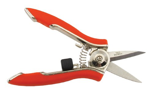 Most Popular Pruners