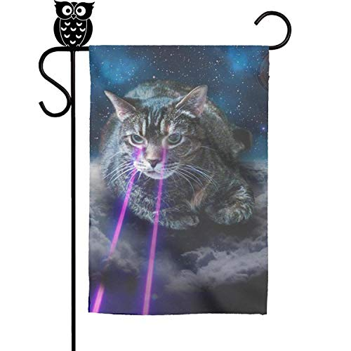 - Quinnteens Cats and Lasers - 2018 Funny Cats Home Garden Flag Yard Flag Summer Yard Outdoor Decorative 12x18 inch