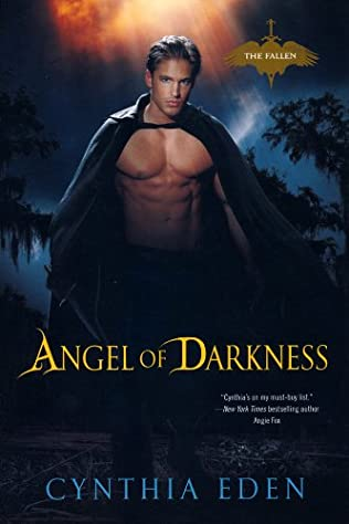 book cover of Angel of Darkness