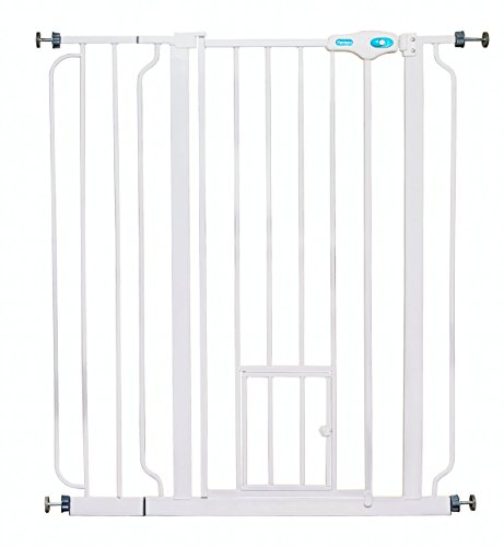Carlson Extra Tall Pet Gate, with small pet door 2-Pack by Carlson