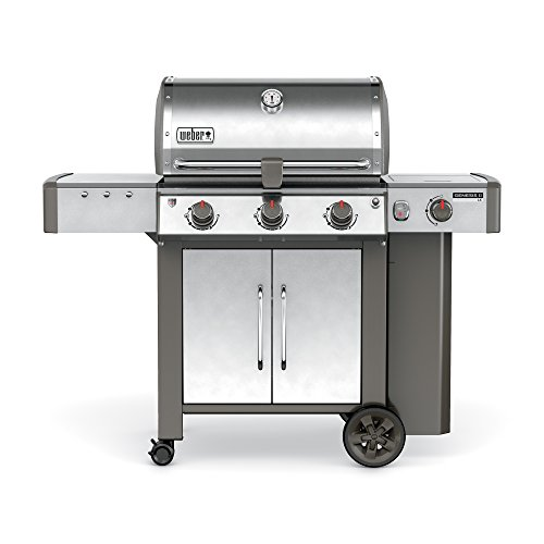 Weber 61004001, Stainless Steel