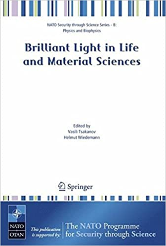 Brilliant Light in Life and Material Sciences (Nato Security