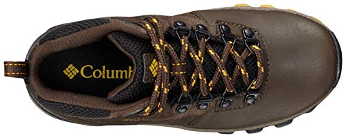 Columbia Unisex-Kid's Youth Newton Ridge Hiking Shoe, Cordovan/Golden Yellow, 7