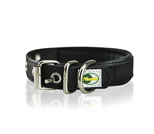 Waterproof Dog Collar- metal buckle, padded, adjustable length 14.8 - 18 inch- black (Buckle Length)
