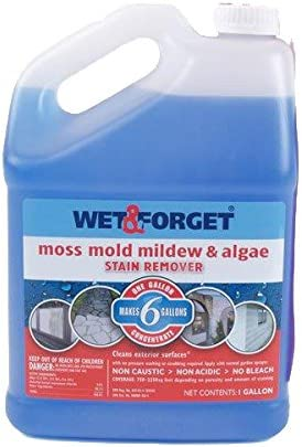 Wet and Forget 1 Gallon Moss, Mold and Mildew Stain Remover