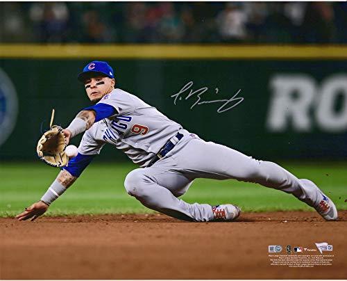 Javier Baez Chicago Cubs Autographed 16