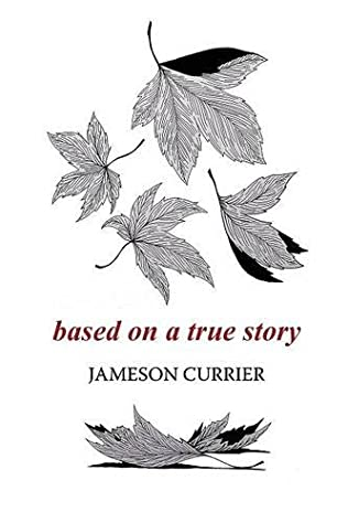 book cover of Based on a True Story