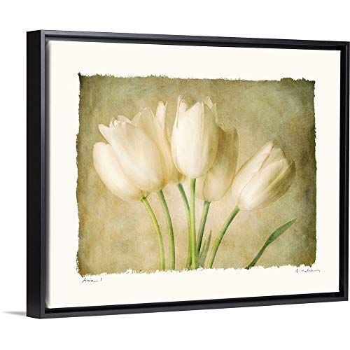 (Amy Melious Floating Frame Premium Canvas with Black Frame Wall Art Print Entitled Aria I 30