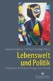 Lebenswelt und Politik: Perspektiven der Phänomenologie nach Husserl (Orbis phaenomenologicus, Perspektiven)