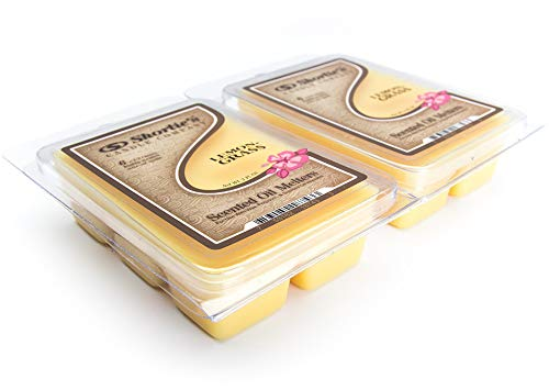 Shorties Candle Company Lemongrass Wax Melts Multi Pack - 2 Highly Scented Bars - Made with Natural Oils - Fresh & Clean Air Freshener Cubes Collection