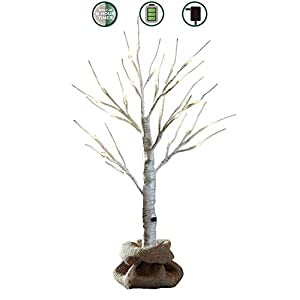 LOFTPLUS LED Birch Tree Hand-Painted Bonsai String Light 24 LED for Indoor Use Warm White Battery-Operated AC Adapter Burlap Sack Included - 24inch Tall 12