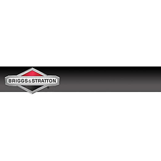 392838 and 692020 Briggs /& Stratton 692020 Oil Seal Replacement for Models 495355
