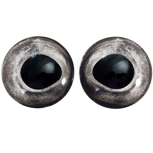 Pair of Natural Fish Eyes 40mm Glass Eye for Taxidermy Sculptures or Jewelry Making Pendants Crafts Art Doll Wire Wrapping DIY Flatback Cabochon ()
