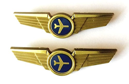 Aviator Kids Airplane Pilot Wings Plastic Pins Pinbacks Badges Lot of 2