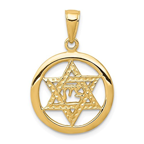 14k Yellow Gold Jewish Chi In Jewelry Star Of David Pendant Charm Necklace Religious Judaica Fine Jewelry Gifts For Women For Her -
