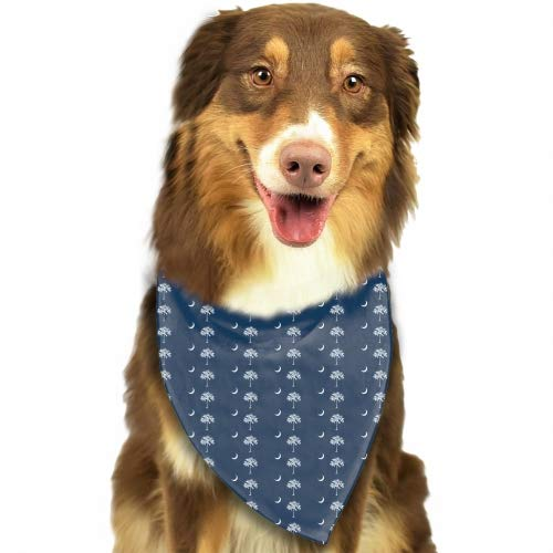 PANQJN Flag of South Carolina State Summer Pineapple Pattern Triangle Pet Scarf Dog Bandana Pet Collars for Dog Cat One Size