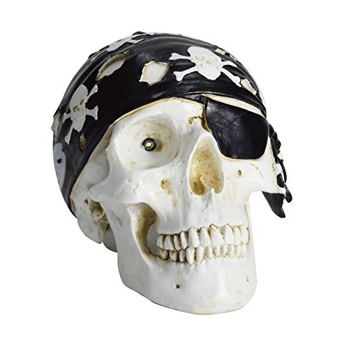 HOMESHINE Halloween Decor Wireless Life Size Pirate Skull Bluetooth Speaker with Night Light