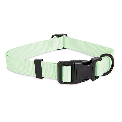 Adjustable Collar, 1