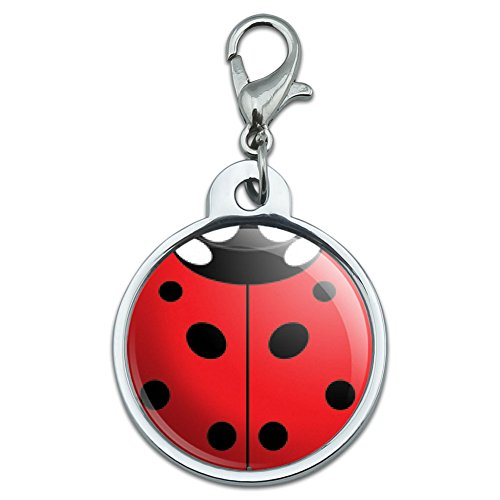 - Graphics and More Chrome Plated Metal Small Pet ID Dog Cat Tag Insects Ladybug Butterfly Dragonfly - Lady Bug Ladybug Insect