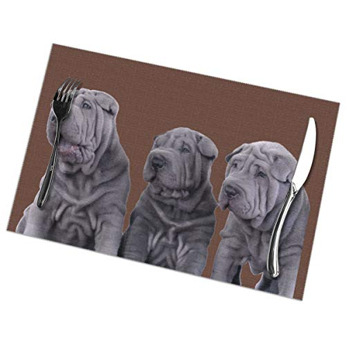 Jaylon Rectangular Placemat for Dining Table Three Shar Pei Dogs Table Mat Heat-Resistant Stain Resistant Anti-Skid Table Decor for Dining Room Kitchen Outdoor Easy to Clean 12x18 Inch Set of 6